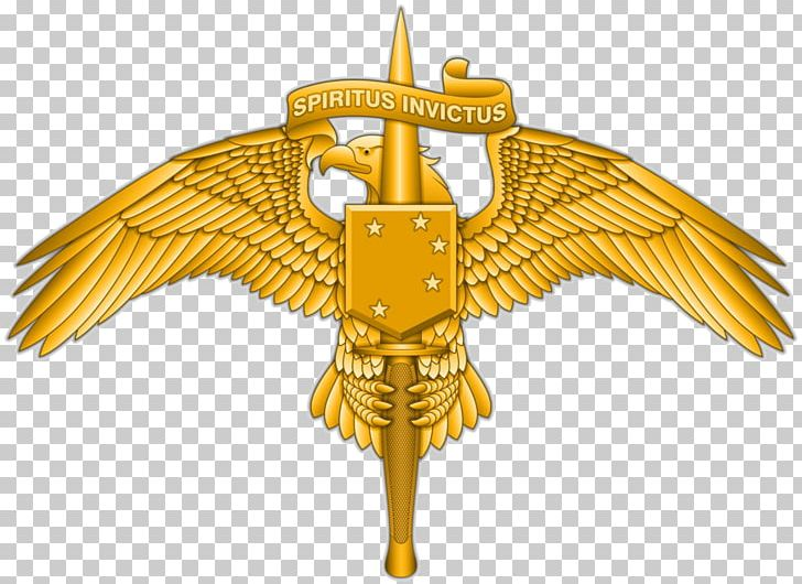 Marine Raider Regiment United States Marine Corps Forces