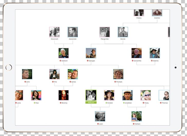 Screenshot Family Tree App Store Trade PNG, Clipart, About