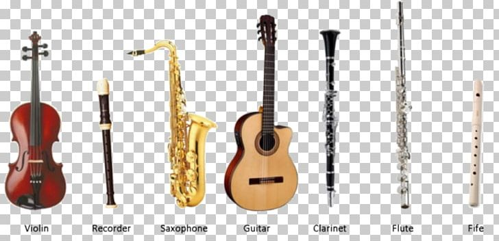 Bass Guitar Acoustic Guitar Musical Instruments Instrumental
