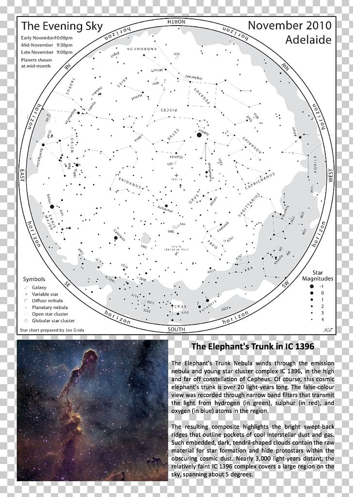 Elephant's Trunk Nebula Circle Organism Font PNG, Clipart, Circle, Font, Organism Free PNG Download