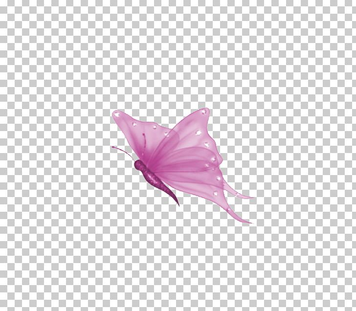 Butterfly Computer Icons PNG, Clipart, Animation, Butterfly, Clip Art, Computer Icons, Desktop Wallpaper Free PNG Download