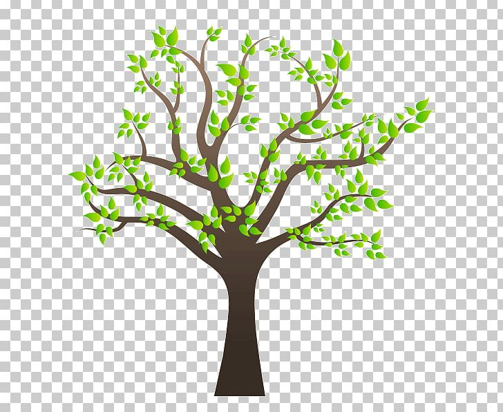 Family Tree Family Tree PNG, Clipart, Arboles, Birch, Branch, Clip Art, Drawing Free PNG Download