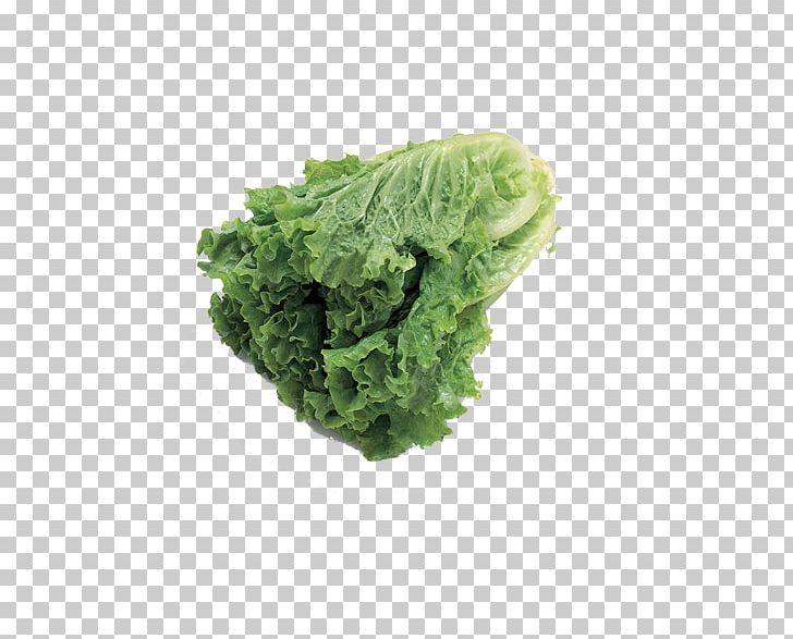 Vegetable Fruit Auglis Food Lettuce PNG, Clipart, Cabbage, Chinese, Chinese Border, Chinese Cabbage, Chinese Dragon Free PNG Download