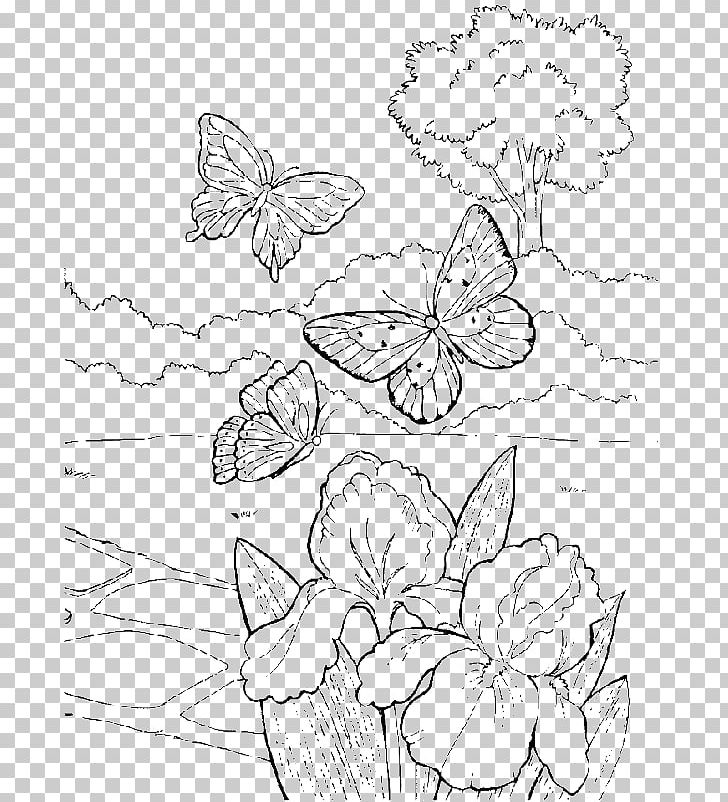 Nursery Drawing Book