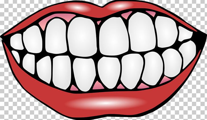 Human Tooth Mouth Smile PNG, Clipart, Clip Art, Deciduous Teeth, Dentist, Dentistry, Facial Expression Free PNG Download