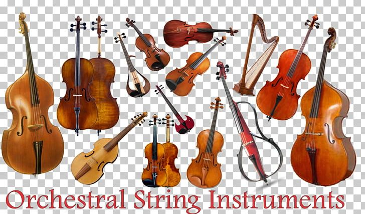 Musical Instruments String Instruments Violin Family Cello PNG, Clipart, Bass Violin, Bowed String Instrument, Cello, Classical Music, Double Bass Free PNG Download