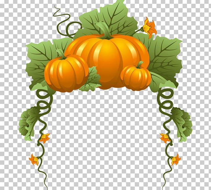 Pumpkin Vine Vegetable PNG, Clipart, Autumn, Calabaza, Cari, Cucumber Gourd And Melon Family, Cucurbita Free PNG Download