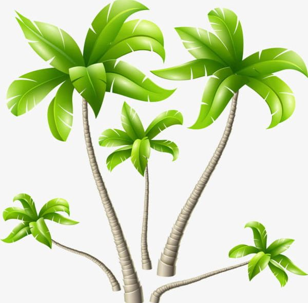 Hand Painted Cartoon Rubber Tree Png Clipart Beach Beach Trees
