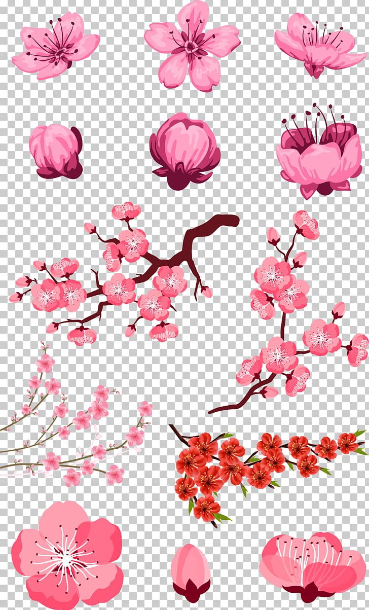 Adobe Illustrator PNG, Clipart, Branch, Clip Art, Design, Flower, Flower Arranging Free PNG Download