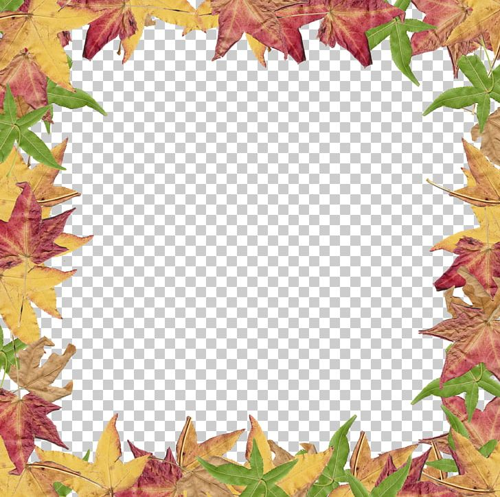 Autumn Leaf Color PNG, Clipart, Autumn, Autumn Leaf Color, Blog, Border Leaves Cliparts, Cartoon Free PNG Download