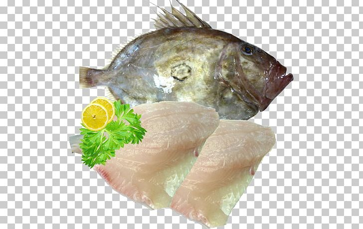 Sashimi Smoked Salmon Recipe Tilapia Fish Fillet PNG, Clipart, Animals, Animal Source Foods, Cooking, Dish, Dory Free PNG Download