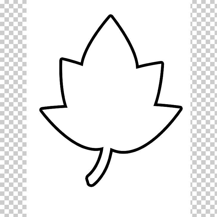 Autumn Leaf Color Outline Maple Leaf PNG, Clipart, Angle, Area, Artwork, Autumn, Autumn Leaf Color Free PNG Download