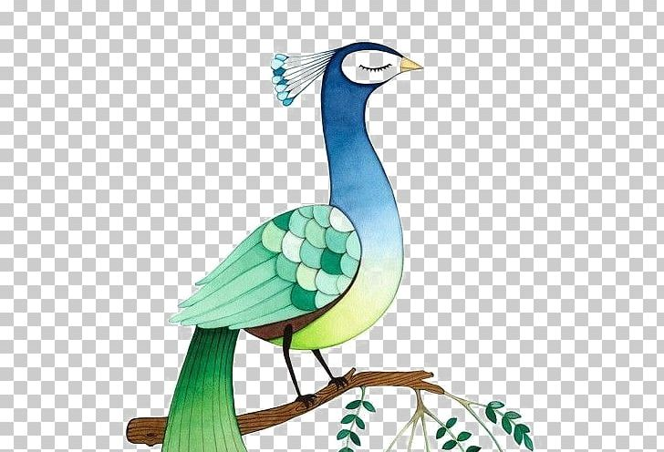 Bird Asiatic Peafowl Feather Peacock Dance PNG, Clipart, Animal, Animals, Art, Asiatic Peafowl, Cartoon Free PNG Download