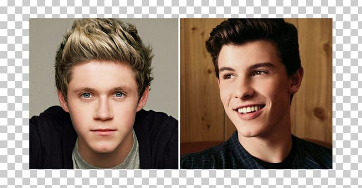 Niall Horan Ed Sheeran One Direction Guitarist Singer PNG, Clipart