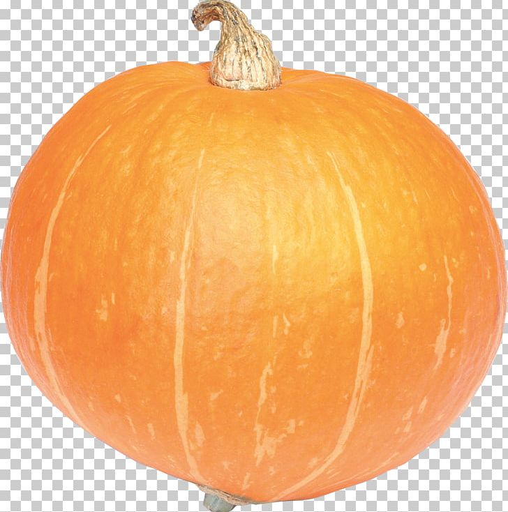 Pumpkin PNG, Clipart, Pumpkin Free PNG Download