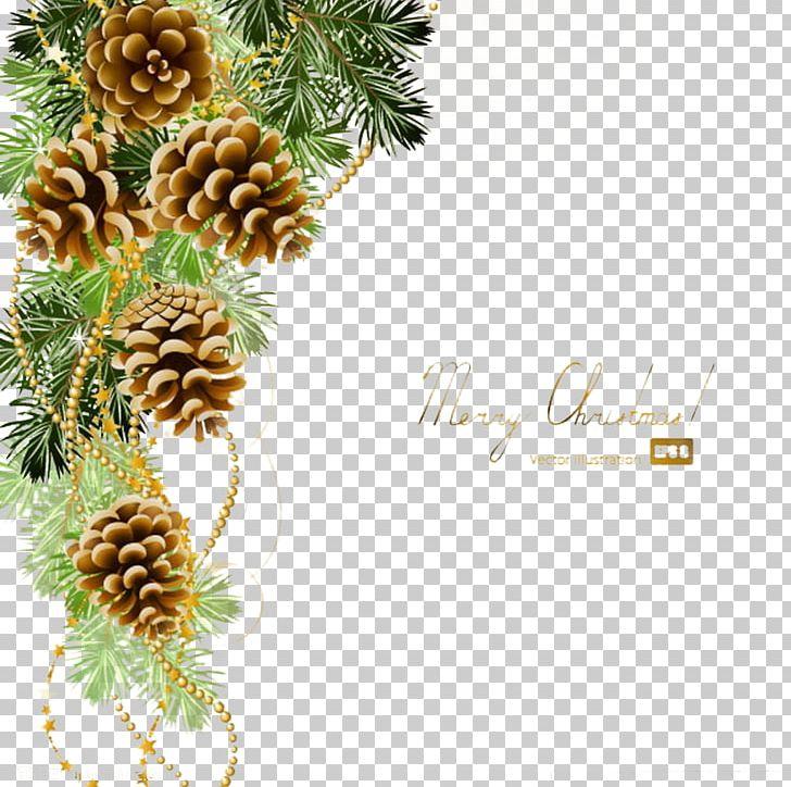 LiveInternet Albom Blog PNG, Clipart, Albom, Album, Branch, Chr, Christmas Free PNG Download