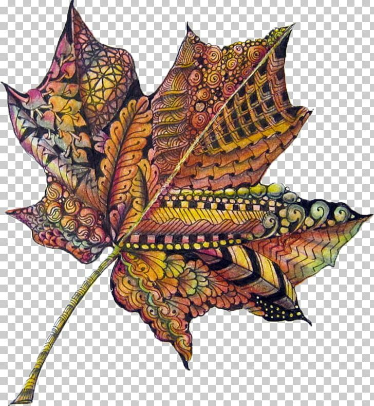 Autumn Leaf Color Drawing PNG, Clipart, Art, Autumn, Autumn Leaf Color, Color, Colored Pencil Free PNG Download