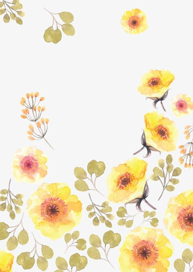 Watercolor flowers yellow. Png clipart flower