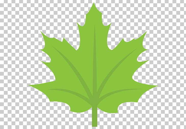 Maple Leaf Flag Of Canada Sugar Maple PNG, Clipart, Autumn, Autumn Leaf Color, Canada, Color, Computer Icons Free PNG Download