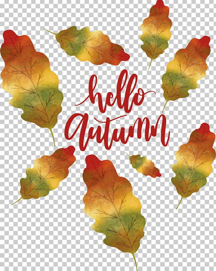 Autumn Poster PNG, Clipart, Autumn Leaf, Autumn Leaves, Autumn Tree, Autumn Vector, Deciduous Pattern Free PNG Download