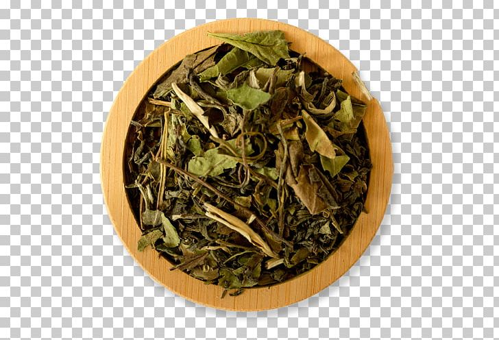Hōjicha White Tea Assam Tea Sencha Green Tea PNG, Clipart, Assam Tea, Bai Mudan, Bancha, Biluochun, Black Tea Free PNG Download
