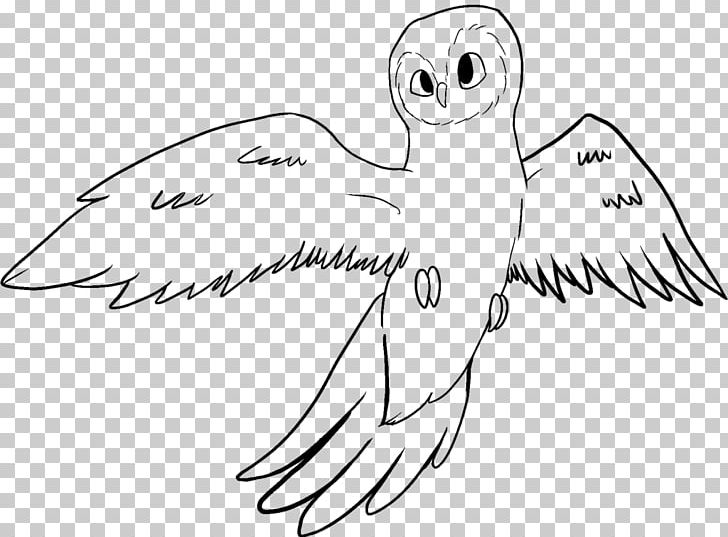 Beak Owl Bird Line Art Drawing PNG, Clipart, Angle, Animals, Area, Arm, Art Free PNG Download
