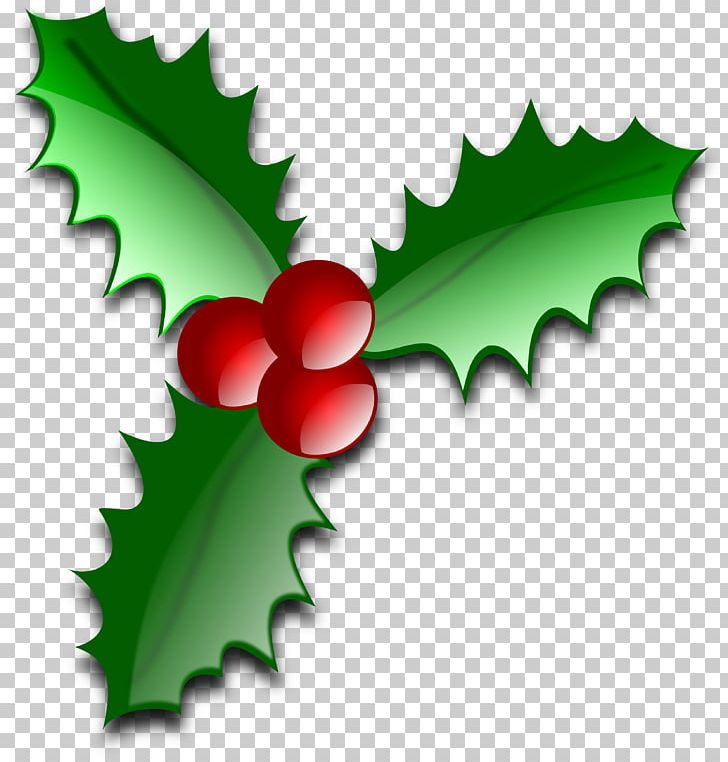 Christmas Leaf Png.Common Holly Christmas Leaf Png Clipart Advent Candle