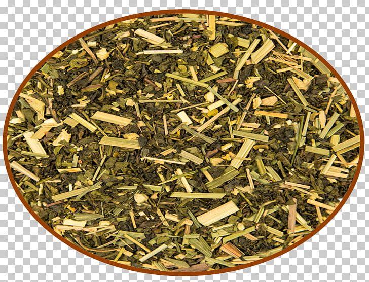 Nilgiri Tea Hōjicha Tea Plant PNG, Clipart, Bancha, Biluochun, Chun Mee Tea, Darjeeling Tea, Dianhong Free PNG Download