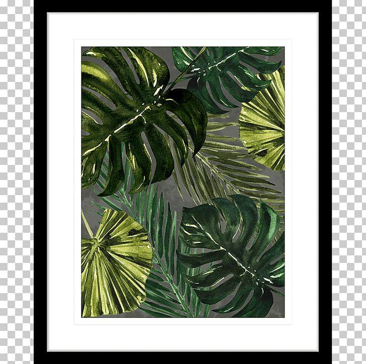 Autumn Leaf Color Maple Leaf Evergreen PNG, Clipart, Autumn, Autumn Leaf Color, Evergreen, Green, Leaf Free PNG Download