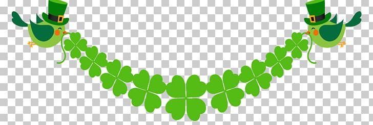 Saint Patricks Day Shamrock Leprechaun PNG, Clipart, Bird, Bird Cage, Bird Nest, Border, Clover Border Free PNG Download