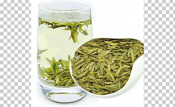 Hōjicha Nilgiri Tea Bancha Sencha PNG, Clipart, Baihao Yinzhen, Bancha, Biluochun, Darjeeling Tea, Dianhong Free PNG Download