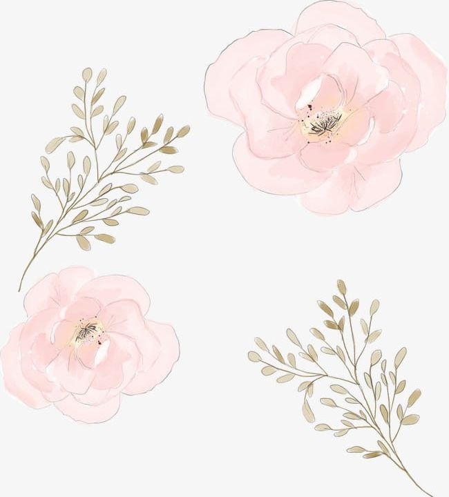 Watercolor Flowers PNG, Clipart, Branch, Flowers, Flowers Clipart, Pink, Watercolor Free PNG Download