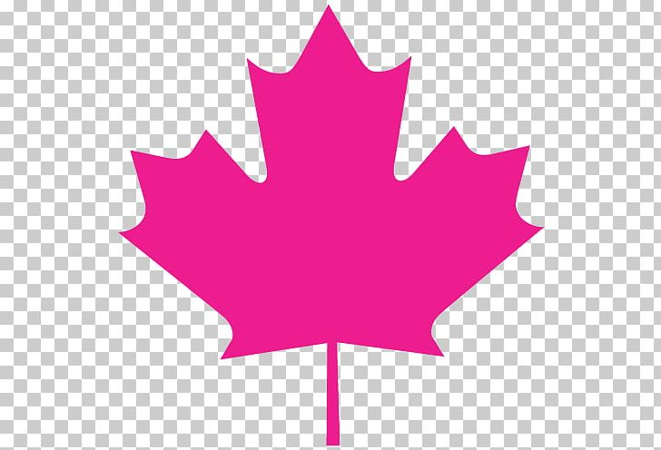 Flag Of Canada Maple Leaf National Flag Stock Photography PNG, Clipart, Canada, Flag, Flag Of Canada, Flower, Flowering Plant Free PNG Download