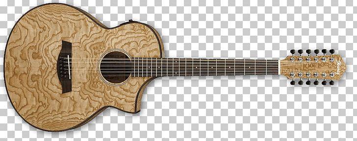 Ibanez Rg Ibanez Exotic Wood Series Aew40 Acoustic Electric