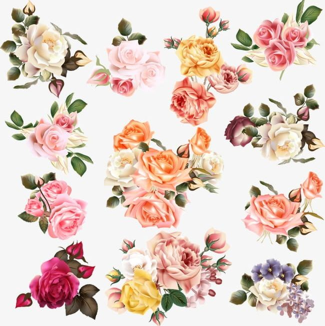 Hand-painted Flowers PNG, Clipart, Decoration, Design, Download, Flower, Flowers Free PNG Download