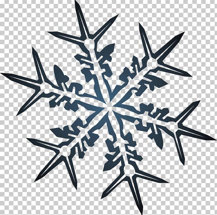 L Etoile De Noel Christmas Png Clipart Free Png Download