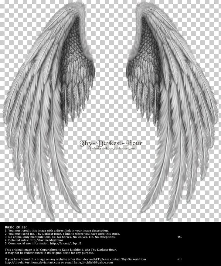 Angel Wing PNG, Clipart, Angel, Angels, Angel Wing, Angel Wings, Black And White Free PNG Download