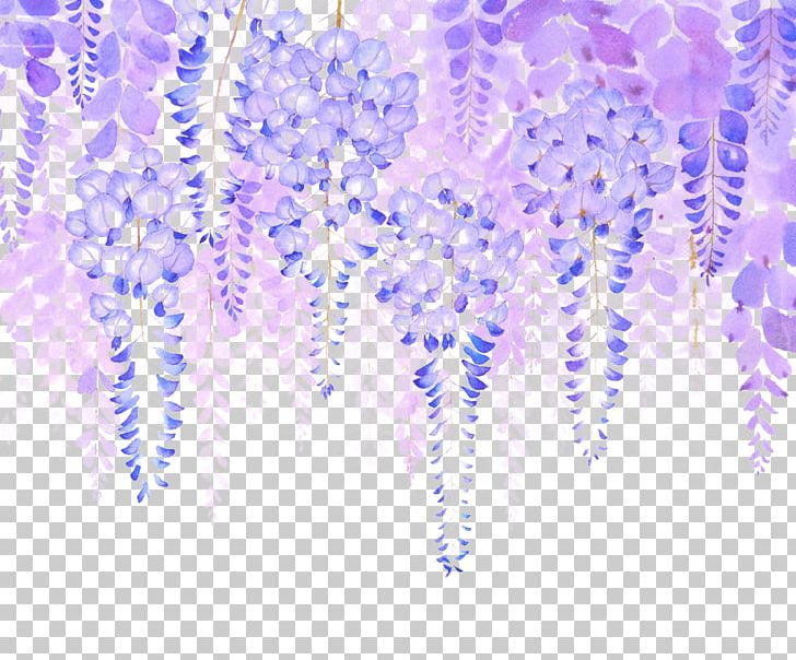Wisteria Vines, Purple Flowers, Phytochemicals, Vine PNG Transparent Clipart  Image and PSD File for Free Download