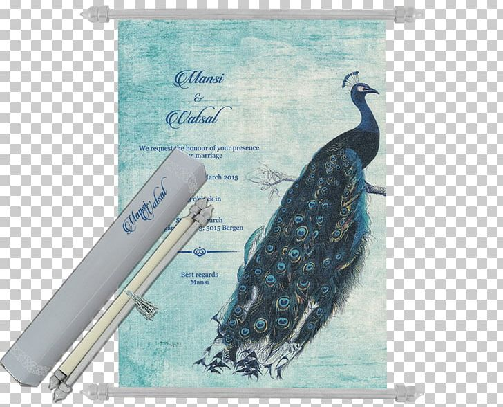 Bird Asiatic Peafowl Feather PNG, Clipart, Advertising, Animal, Animals, Asiatic Peafowl, Beak Free PNG Download