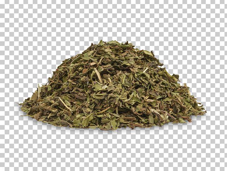 Hōjicha Nilgiri Tea Earl Grey Tea Lady Grey PNG, Clipart, Assam Tea, Bai Mudan, Bancha, Bergamot Orange, Biluochun Free PNG Download