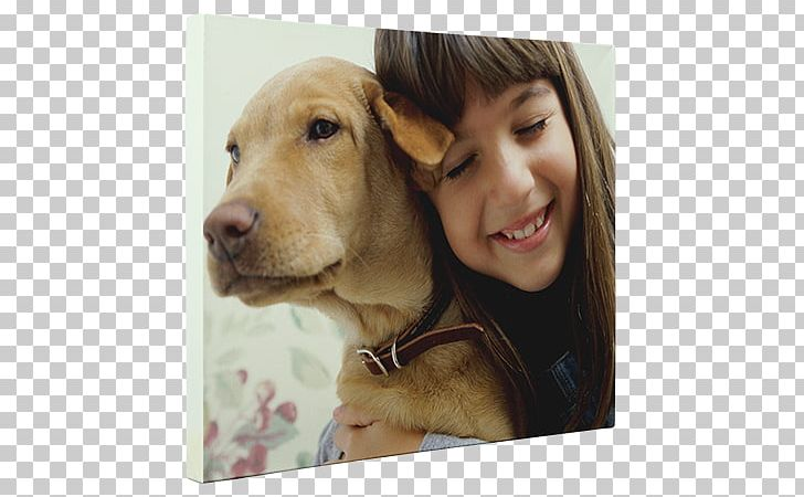 Boxer Child Dog Breed Service Dog Alabama Rot PNG, Clipart, Animal
