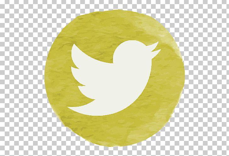 Twitter green. Social media south africa