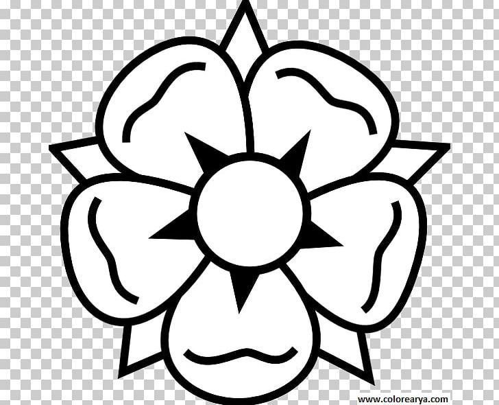 Flower Drawing PNG, Clipart, Art, Black, Black And White, Circle, Download Free PNG Download