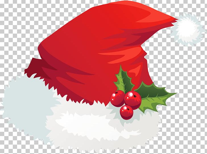 Christmas Santa Claus Hat Mistletoe PNG, Clipart, Christmas, Hat, Holidays Free PNG Download
