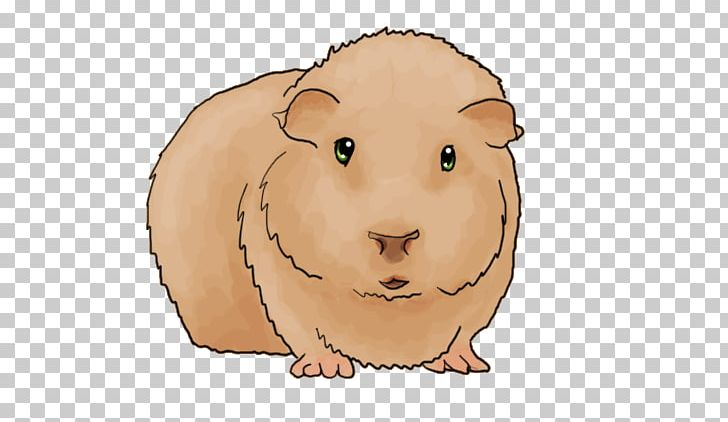 Guinea Pig Whiskers Cat Snout PNG, Clipart, Animal, Carnivoran, Cat, Cuteness, Drawing Free PNG Download