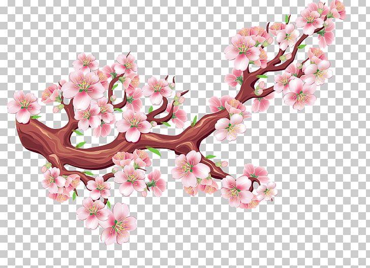 Cherry Blossom Flower Tree PNG, Clipart, Blossom, Branch, Cherry, Cherry Blossom, Drawing Free PNG Download