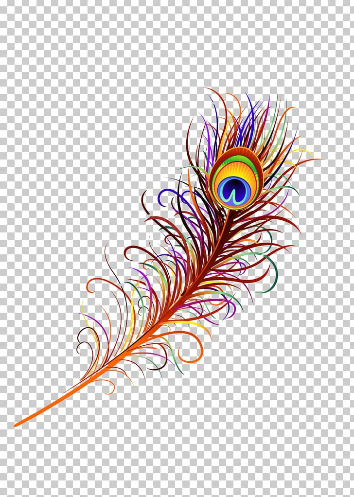 Asiatic Peafowl Feather PNG, Clipart, Animals, Asiatic, Asiatic Peafowl, Circle, Color Free PNG Download
