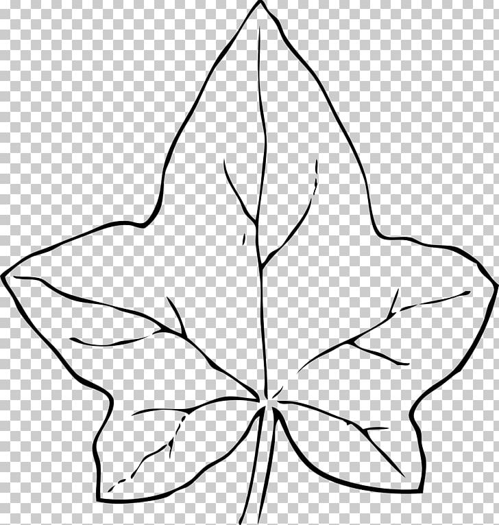Autumn Leaf Color Common Ivy PNG, Clipart, Autumn, Autumn Leaf Color, Black And White, Black Leaves Cliparts, Branch Free PNG Download