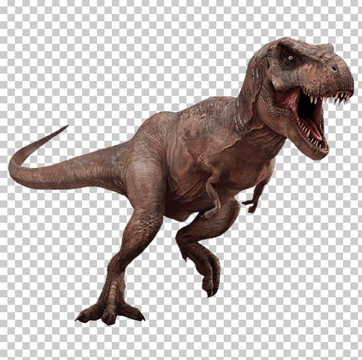 Tyrannosaurus Triceratops Aucasaurus Dinosaur PNG, Clipart, Animal, Animal Figure, Aucasaurus, Desktop Wallpaper, Dinosaur Free PNG Download