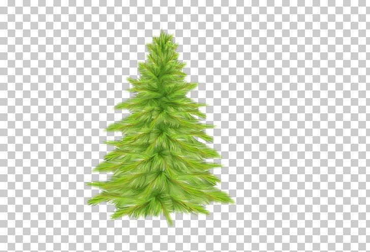 Christmas Tree Spruce Fir PNG, Clipart, Autumn Tree, Christmas, Christmas Decoration, Christmas Ornament, Christmas Tree Free PNG Download